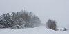 -winter2018.jpg