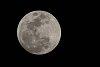 -tues-moon-low-9878.jpg
