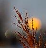 -sunrise-sunset.jpg