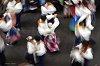 -basque-dances.jpg