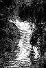-river.jpg