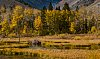 -beaver-dam-lundy-canyon.jpg