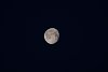 -2018_0502_04465800-full_moon.jpg