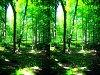 -imgp1251a_1c_stereo_sharp_blur.jpg