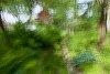 -garden-path.jpg