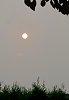 -2018-08-20-smokey-sun9247.jpg