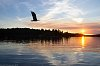 -sunset-over-eagle-res2018.jpg