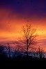 -beautiful-sunset.jpg