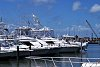 -fishingboats.jpg