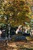 -autumn-20oct18_-007.jpg
