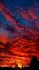 -sunset-r.jpg