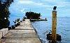 -_igp0757-high-tide-r1.jpg