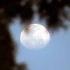 -moon-feb-16-19.jpg