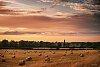 -hay-bales-1600.jpg