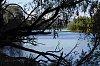 -pete1486-brisbane-river-scene.jpg