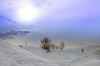 -beaut-hivernale-winter-beauty.jpg