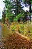 -3-lac-simon-automne-2.jpg