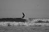 -surfportfolio.jpg
