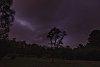 -purple-sky.jpg