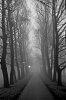-foggy-day-2017-i.jpg
