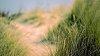 -dunes.jpg