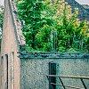 -roof-top-garden.jpg