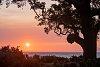 -sunrise-pensacola-2020-small.jpg