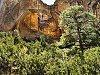 -ventana-arch_submit-z8648-.jpg
