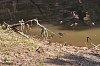 -cottonwood-riverimgp2015may-09-2017.jpg