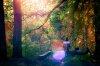 -autumn-flare.jpg