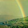 -rainbow-trust-me.jpg