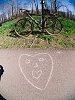 -q7_mar21_21_burned_bike_path-6-bicycle-2-.jpg