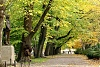 Boston Park near Newbury St-park-pic-1-large-.jpg
