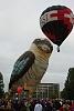 -20100314-kookaburra01.jpg