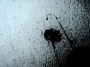 -stormstrokes600.jpg