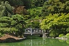 -japanese-pond-two-fav-cropped-600-high.jpg