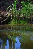 -open-1-water-reflections-andrea-mulder.jpg