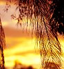-sunset2.jpg