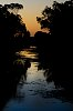 -evening-inthe-swamp-7.jpg