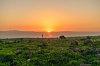 -golan-sunset.jpg