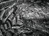 -sbb_sinister-stonework_em5p6517.jpg