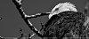 -imgp7153-edit-3.jpg