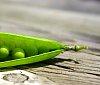 -9-close-up-peas.jpg