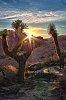 -sunset-redrock-2.jpg