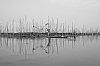 -3-fishermen-bw-pentaxforum.jpg