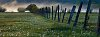 -foggy-morning-fenceline-bowen-valleywm.jpg
