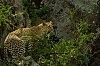 -_igp4449-2012-11-10-13-11-24.jpg