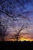 -sunset_in_rome.jpg