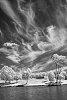 -infrared-2s3.jpg