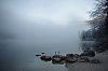 -misty_morning.jpg